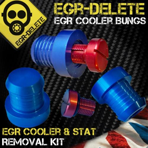 EGR bungs2