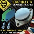 Fiesta Big Plug kit